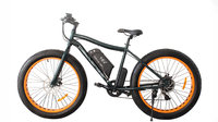 Fat eBike normalisé et Fat Speed Bike